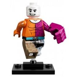 LEGO 71026 MINIFIGURES DC SUPER HEROES METAMORPHO